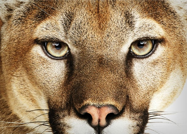 Mac OS X Mountain Lion now available to download from App