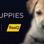 Uber Pune is deploying 'PuppyMobiles' in the city tomorrow to…