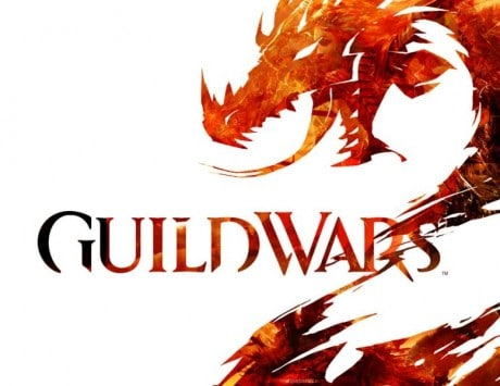 Guild Wars 2 game publisher holds public execution of cheat gamer's character!