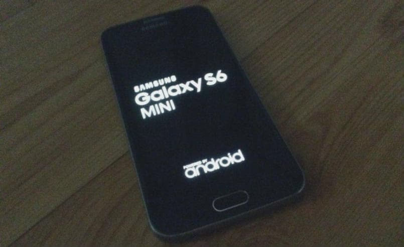 Samsung Galaxy S6 Mini first photos leaked, pegged for an August 13 release
