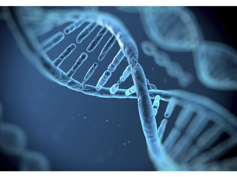 DNA science technology