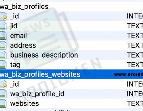 WhatsApp Business Profiles appear on the app database: Report