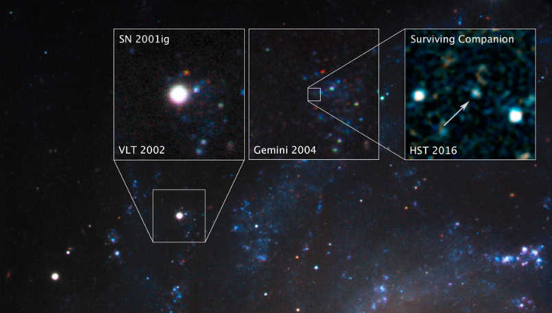 nasa hubble supernova companion main