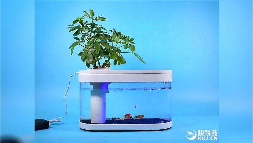 Xiaomi Fish Tank launched in China for around Rs 3,050, can be powered by a power bank