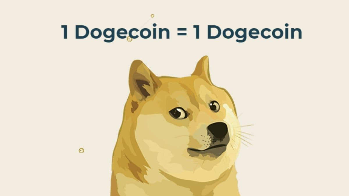 Dogecoin explained: What is it, how to buy in India